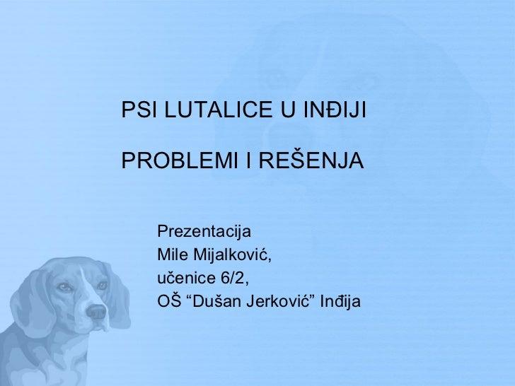 PSI LUTALICE U INĐIJI  PROBLEMI I REŠENJA <ul><li>Prezentacija </li></ul><ul><li>Mile Mijalković,  </li></ul><ul><li>učeni...