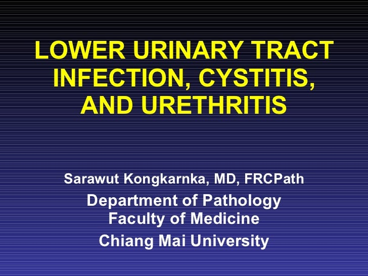 LOWER URINARY TRACT INFECTION, CYSTITIS, AND URETHRITIS Sarawut Kongkarnka, MD, FRCPath Department of Pathology Faculty of...