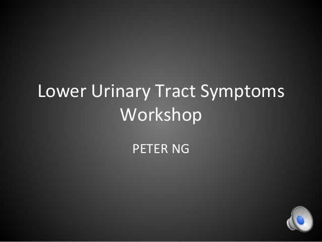 Lower Urinary Tract Symptoms Workshop PETER NG