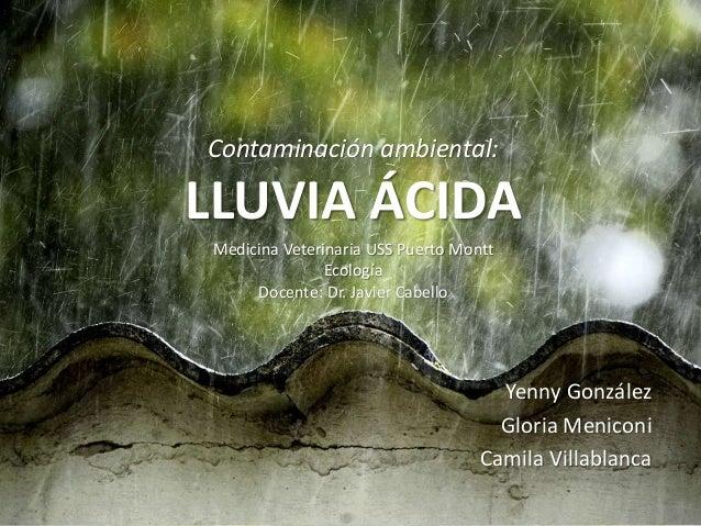 Contaminación ambiental: LLUVIA ÁCIDA Yenny González Gloria Meniconi Camila Villablanca Medicina Veterinaria USS Puerto Mo...