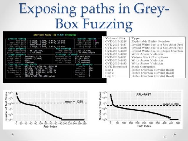 Exposing paths in Grey- Box Fuzzing 30