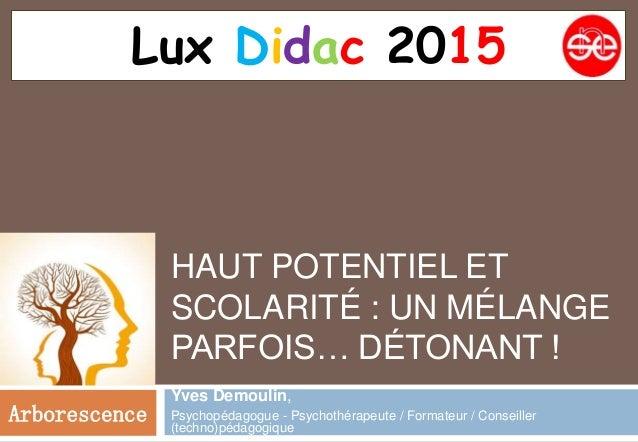 HAUT POTENTIEL ET SCOLARITÉ : UN MÉLANGE PARFOIS… DÉTONANT ! Yves Demoulin, Psychopédagogue - Psychothérapeute / Formateur...