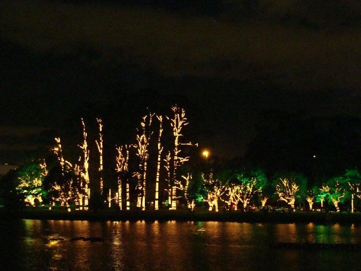 Luzes do Natal no Parque do Ibirapuera em São Paulo Slide 1