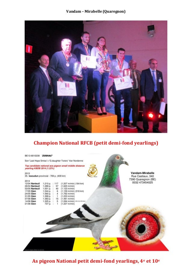 Vandam – Mirabelle (Quaregnon) Champion National RFCB (petit demi-fond yearlings) As pigeon National petit demi-fond yearl...