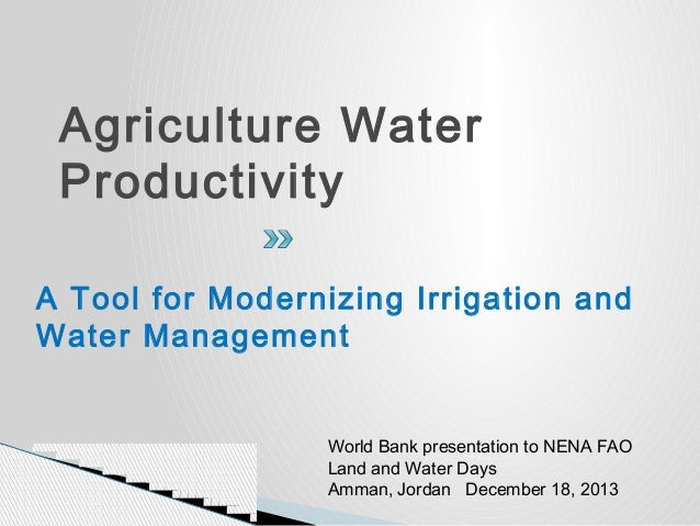 Agriculture Water Productivity A Tool for Modernizing Irrigation and Water Management  World Bank presentation to NENA FAO...