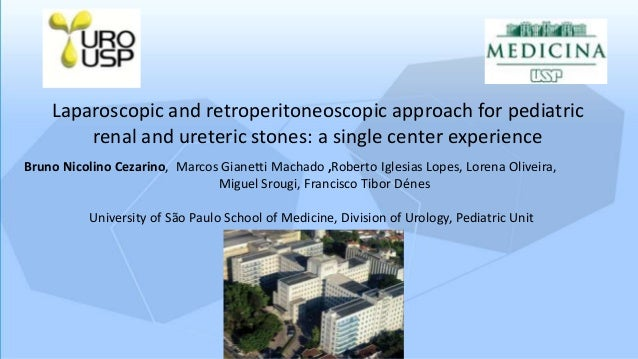 Laparoscopic and retroperitoneoscopic approach for pediatric renal and ureteric stones: a single center experience Bruno N...