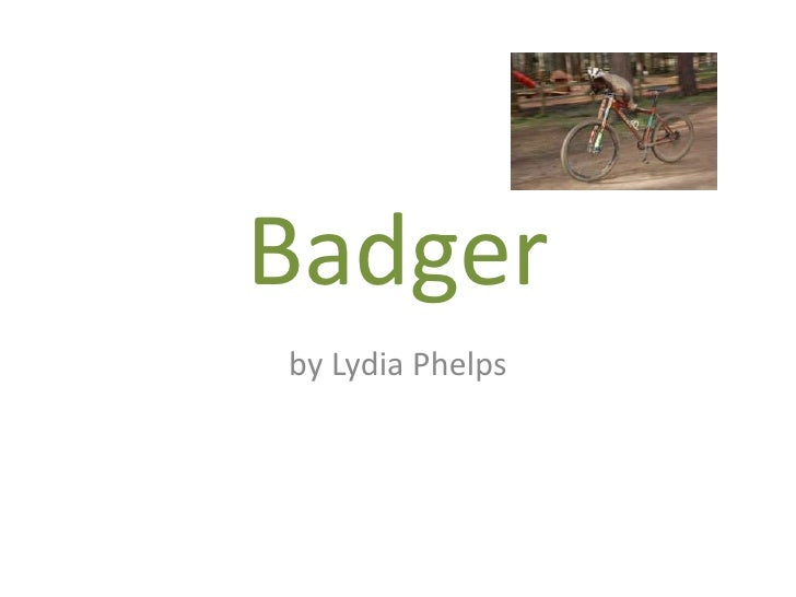 Badger<br />by Lydia Phelps <br />