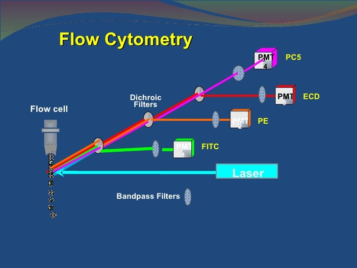 how to detect flowcell using minknow2