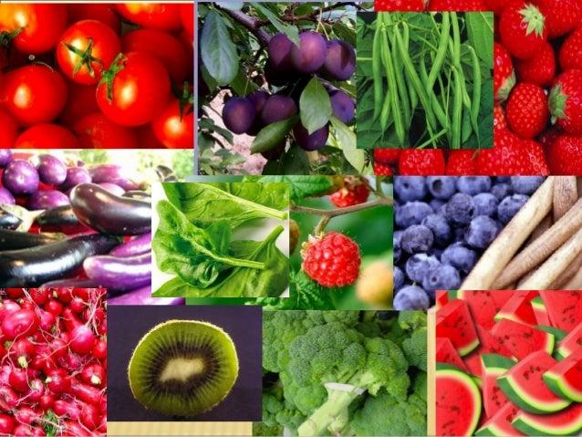 Saiba exatamente o que comer para curar a doença de Lyme