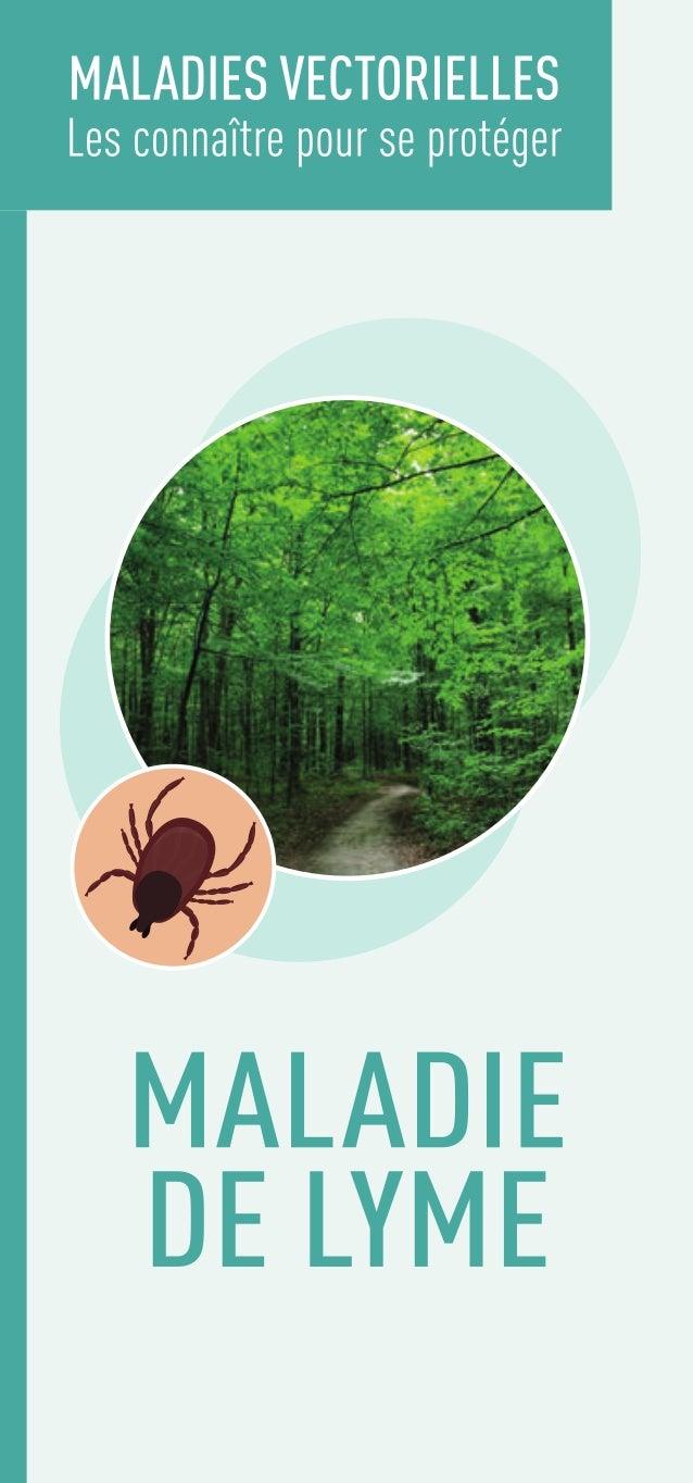Maladie de Lyme : dépliant grand public