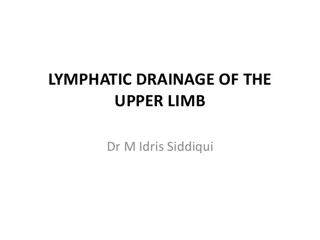Lymphatic drainage of the upper limb