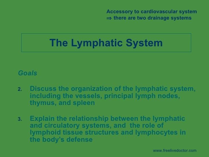 The Lymphatic System <ul><li>Goals </li></ul><ul><li>Discuss the organization of the lymphatic system, including the vesse...