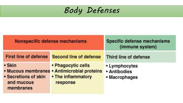 the human defense system Spear system: pdr program personal defense readiness  personal defense readiness, personal safety,  human defense system august 1,.