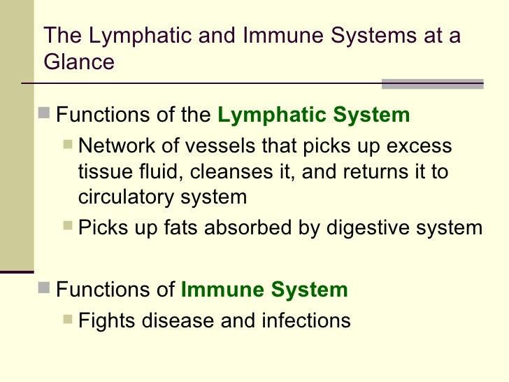 Lymphedema Immune System B
