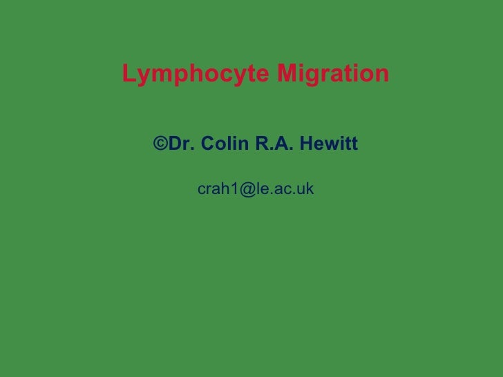 Lymphocyte Migration © Dr. Colin R.A. Hewitt [email_address]