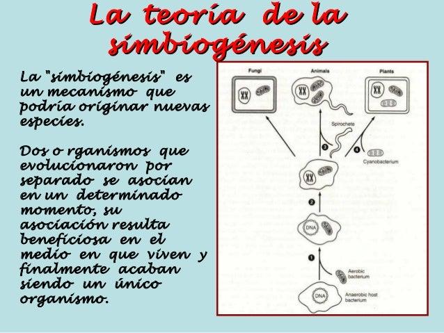Resultado de imagen de Simbiogénesis y Teoría de la simbiogénesis