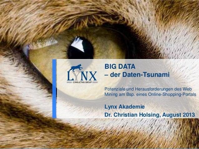 BIG DATA – der Daten-Tsunami Potenziale und Herausforderungen des Web Mining am Bsp. eines Online-Shopping-Portals Lynx Ak...