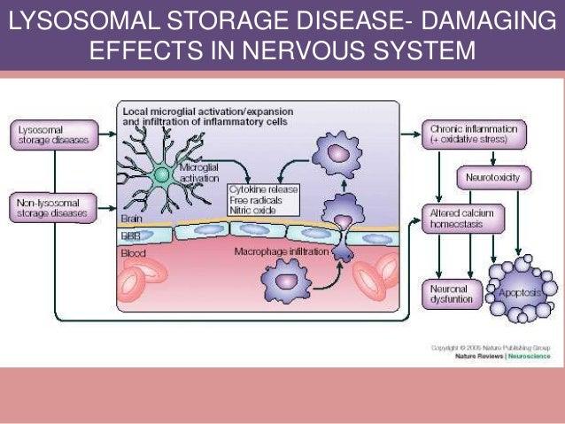 LYSOSOMAL STORAGE DISEASE- DAMAGING EFFECTS IN NERVOUS SYSTEM