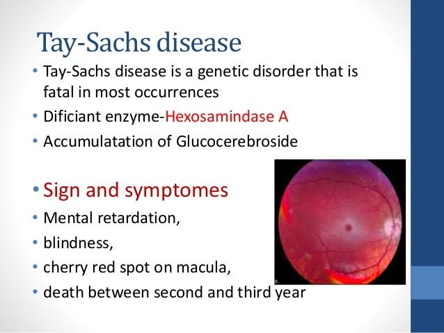 a description of the tay sachs disease as a fatal genetic disorder of the nervous system Tay-sachs disease is a genetic disorder which leads to the premature death of young children tay-sachs disease tay-sachs disease description tay-sachs disease (tsd) is a fatal inherited (genetic) disorder of the central nervous system read more on brain foundation website.