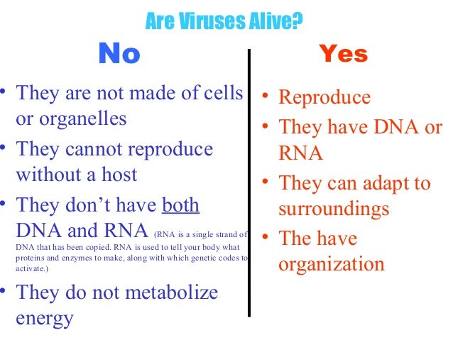 how to tell if its a virus