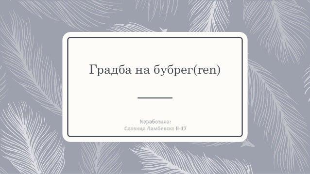 Градба на бубрег(ren) Изработила: Славица Ламбевска II-17