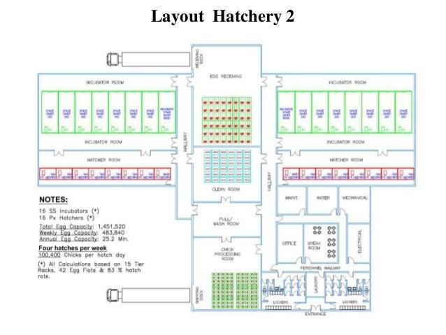 hatchery design