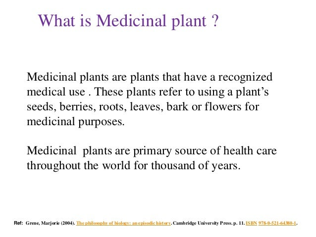 Thesis On Antioxidant Activity Of Medicinal Plants