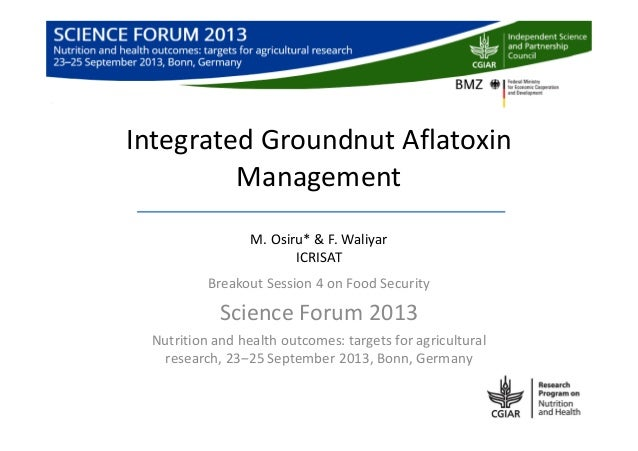 Integrated Groundnut Aflatoxin Management M. Osiru* & F. Waliyar ICRISAT Breakout Session 4 on Food Security Science Forum...