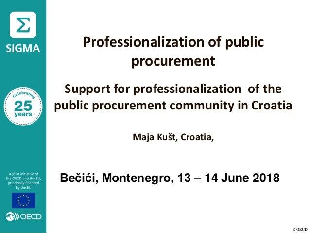 © OECD Professionalization of public procurement Support for professionalization of the public procurement community in Cr...