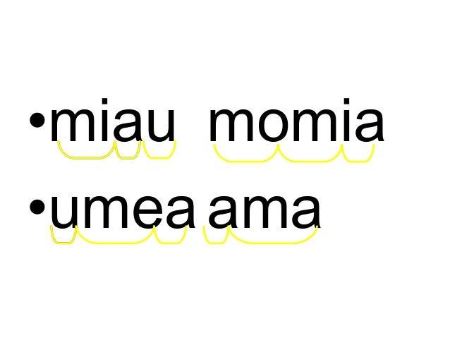 Amaia mimoa amua