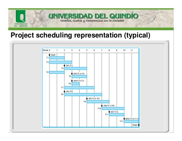 Project scheduling representation (typical)
