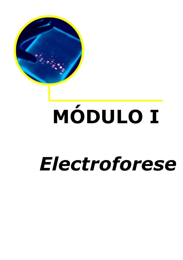 MÓDULO I Electroforese