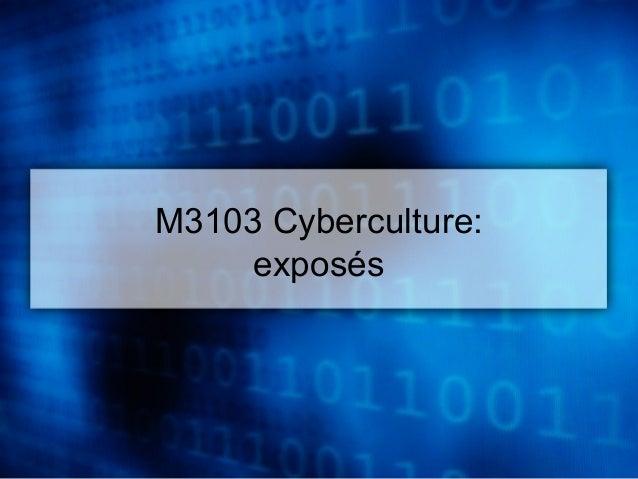 M3103 Cyberculture:  exposés