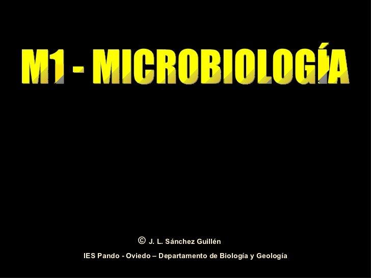 M1 - MICROBIOLOGÍA IES Pando - Oviedo – Departamento de Biología y Geología ©  J. L. Sánchez Guillén