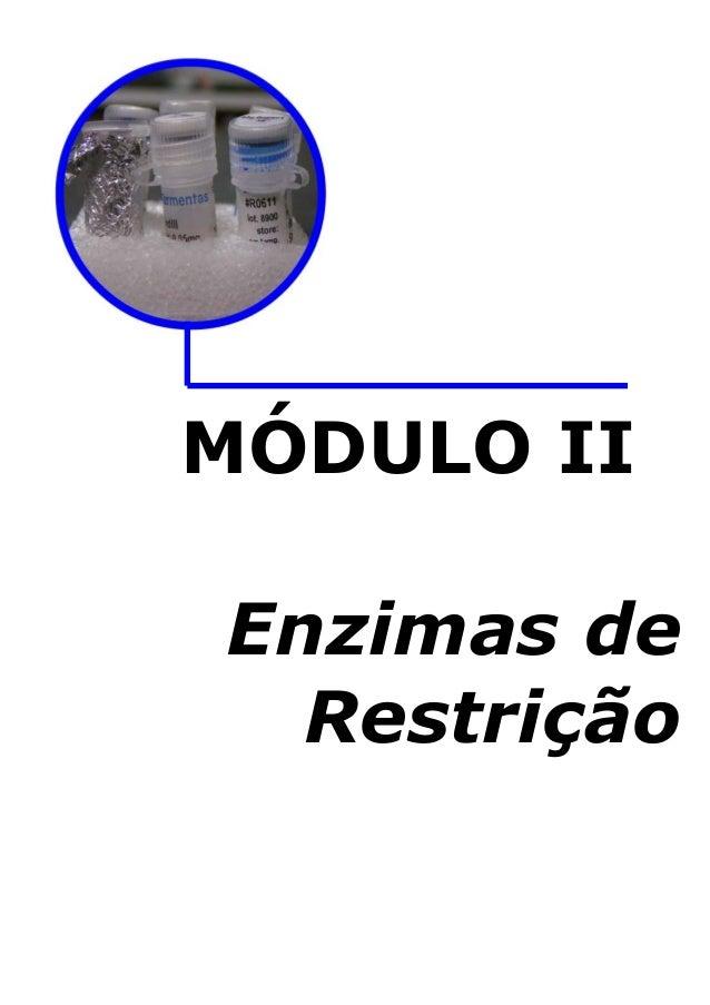 MÓDULO II Enzimas de Restrição