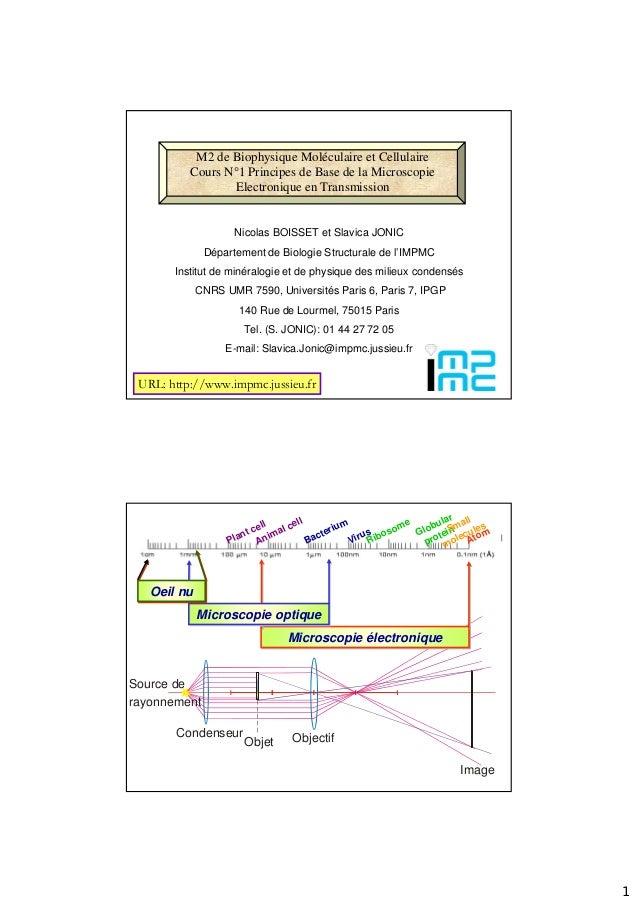 1 M2 de Biophysique Moléculaire et Cellulaire Cours N°1 Principes de Base de la Microscopie Electronique en Transmission U...