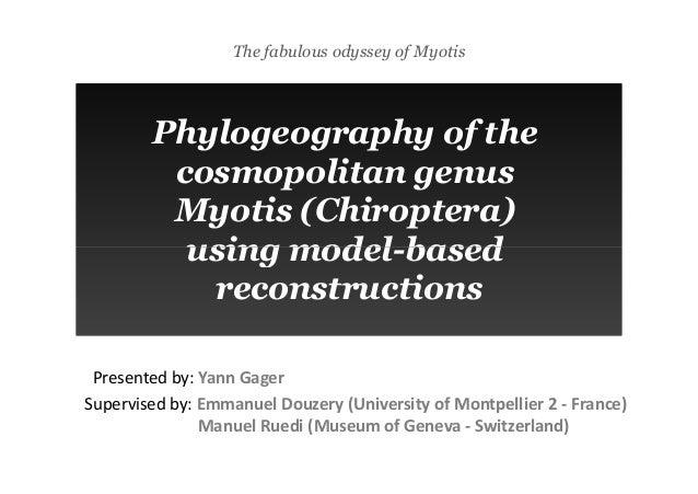 The fabulous odyssey of Myotis Phylogeography of the cosmopolitan genus Myotis (Chiroptera) using model-based Phylogeograp...