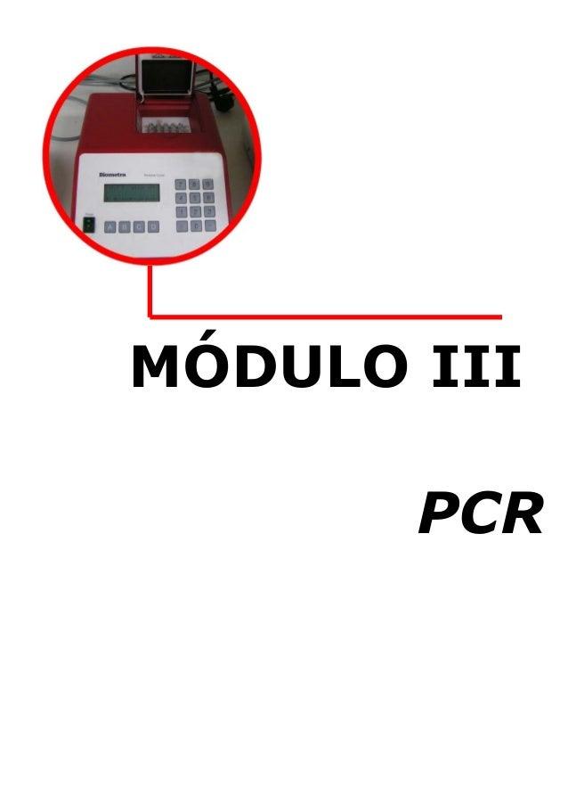 MÓDULO III PCR