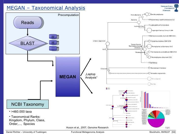 Dyskeratosis congenita mutations in dyskerin SUMOylation ...