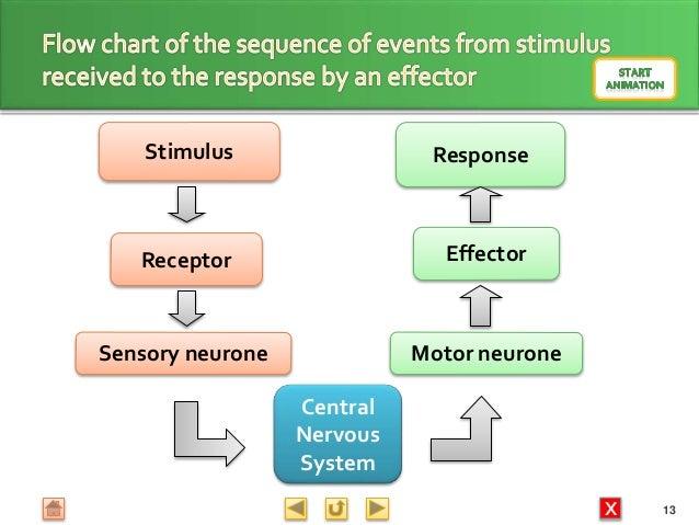 Biology M3 Response
