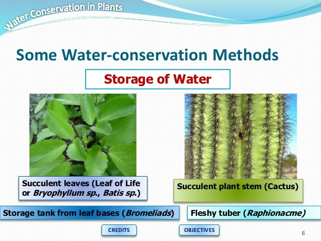 soil and water conservation methods pdf