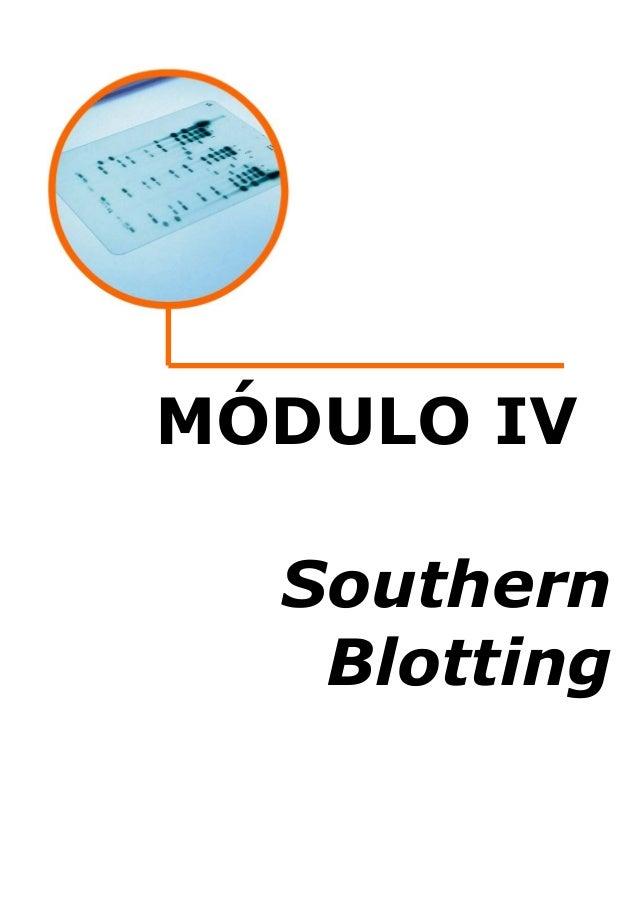 MÓDULO IV Southern Blotting