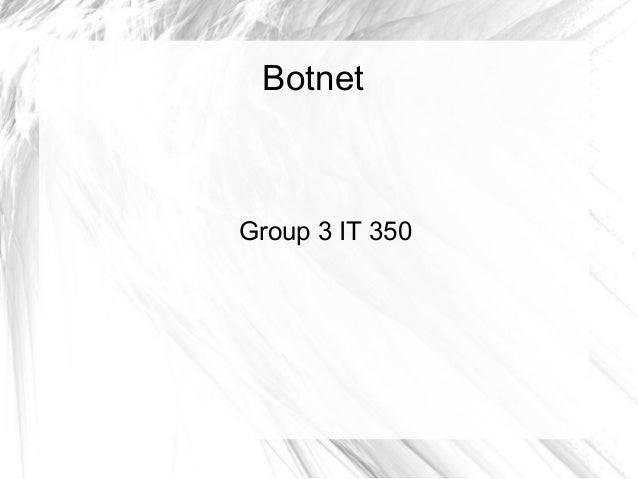 Botnet  Group 3 IT 350