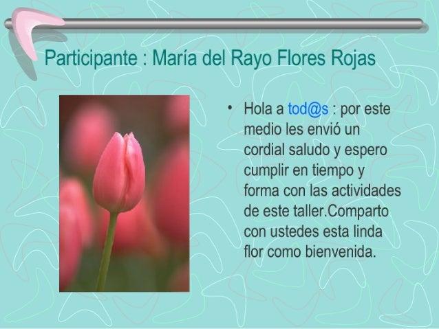 Ñ   Participante :  María del Rayo Flores Rojas  ° Hola a tod@s :  por este medio les envió un cordial saludo y espero cum...