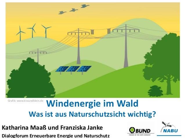 Katharina Maaß und Franziska Janke Dialogforum Erneuerbare Energie und Naturschutz Windenergie im Wald Was ist aus Natursc...
