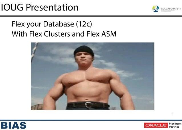 IOUG Presentation 1 With Flex Clusters and Flex ASM Flex your Database (12c)