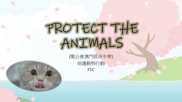 PROTECT THE ANIMALS (聖公會澳門蔡高中學) 保護動物行動 F5C