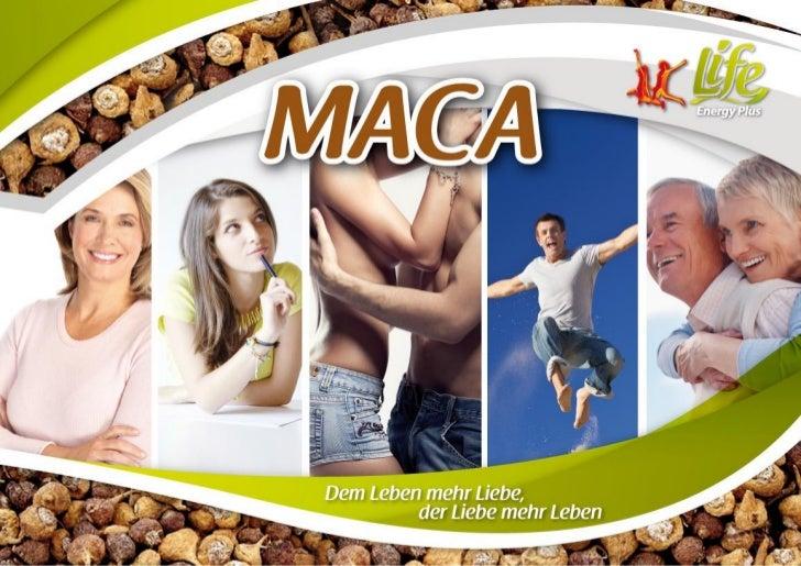 Maca - Die starke Wurzel aus den Anden