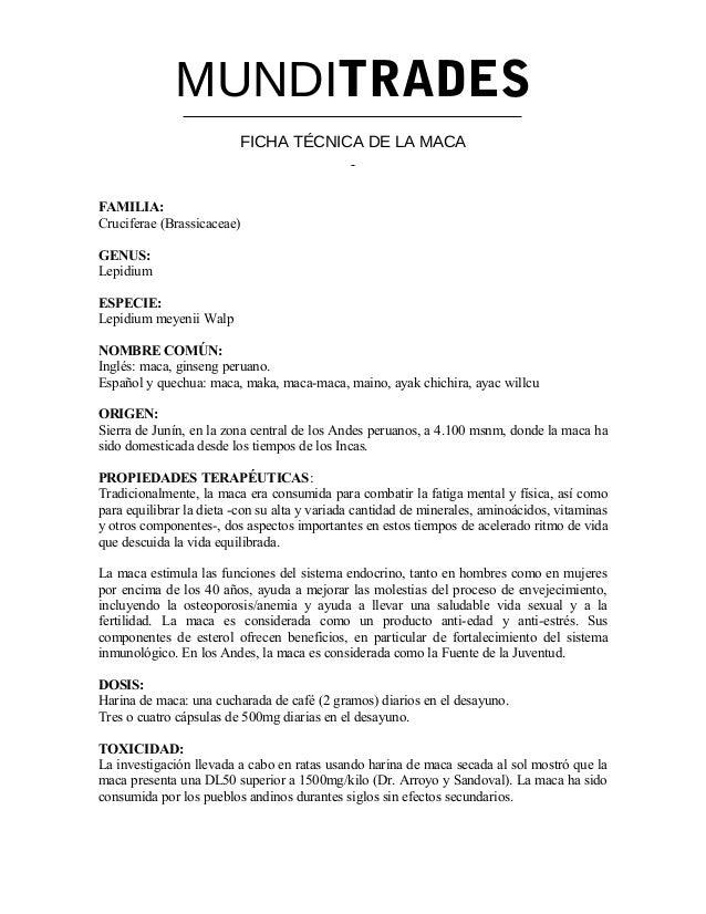 MUNDITRADES FICHA TÉCNICA DE LA MACA FAMILIA: Cruciferae (Brassicaceae) GENUS: Lepidium ESPECIE: Lepidium meyenii Walp NOM...