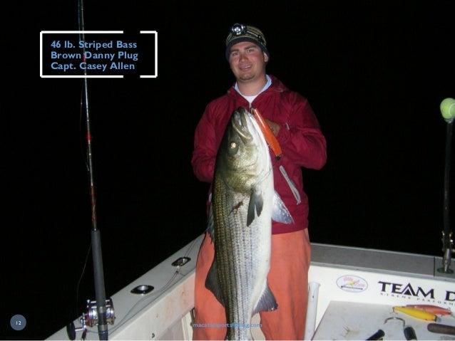 46 lb. Striped Bass Brown Danny Plug Capt. Casey Allen macatacsportsfishing.com12